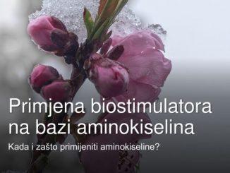 Primjena biostimulatora na bazi aminokiselina
