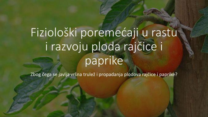 Fiziološki poremećaji u rastu i razvoju ploda rajčice i paprike