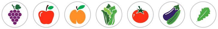 Vinodar organsko mineralna gnojiva